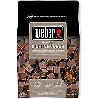 Weber 17612 - Bolsa de 48 pastillas de encendido marrón