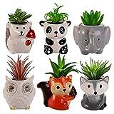 Suwimut 6 Pack Succulent Planter Pots, Small Ceramic Animal Succulent Planters with Drainage, Cute Cactus Flower Pot Garden Planters, Office Home Decor, Fox Panda Owl Elephant Hedgehog Civet Assorted