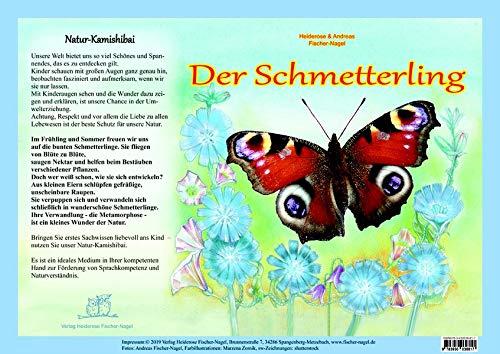 Natur-Kamishibai - Der Schmetterling