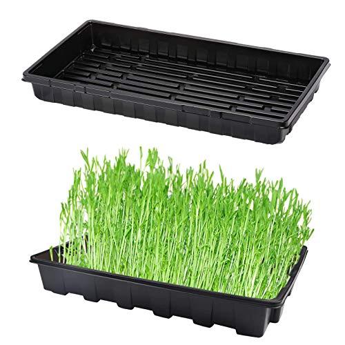 Lomelomme 1/5/10 Stücke Mini Zimmergewächshaus Anzuchtschalen, Klein Gewächshaus Anzucht Set, Kunststoff Anzuchtschalen für Sämling Pflanze Aufzucht (Plant C,10PC)