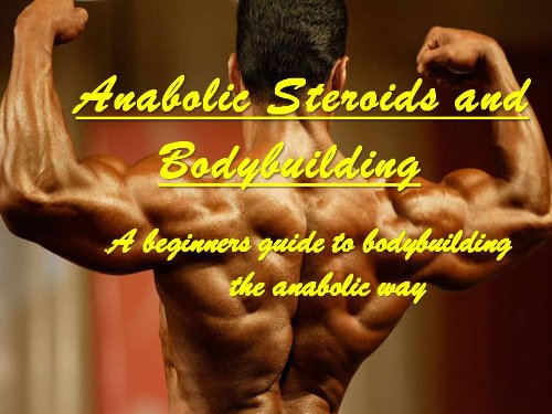 How To Start dhea bodybuilding With Less Than $110