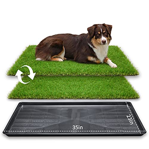 LOOBANI 35in x 23in Extra Large Grass Porch Potty Tray, 2-Packs Replacement Artificial Fake Grass Puppy Training Pads- Portable Dog Patio Potty for Balcony/Apartment Use (Pet Tray, 35