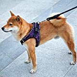 Fooubaby Step in Vest Harness Elastic Flyknit Soft Padded Mesh for Small Medium Dogs Cats with High Reflective Edges, Easy to wear and take Off Machine Washable (L, Purple)