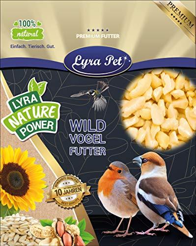 Lyra Pet® 25 kg Erdnusskerne weiß gehackt HK Südamerika Erdnussbruch Erdnüsse Vogelfutter Wildvogelfutter Ganzjahresfutter Körner