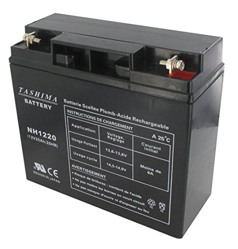 Greenstar 11773 Batterie NH1220