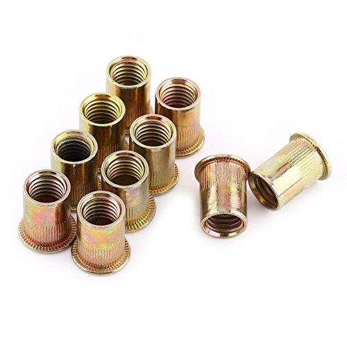100 Stück/Packung Gewindenieten M5,Nietmuttern Sortiment Edelstahl,Nietmuttern Verzinkt Für Bleche Aus Metallblechen Und Andere Fertigungsindustrien(M5)