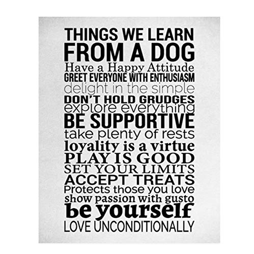 Things We Learn From a Dog