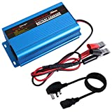 Tesure 24V 5Amp Automatic Battery Charger Maintainer, Car Battery Charger Maintainer with Alligator Clips for Scooter, Wheelchair, Motorcycle, eBike, Lawn Mower Electric Tools Emergency Light etc