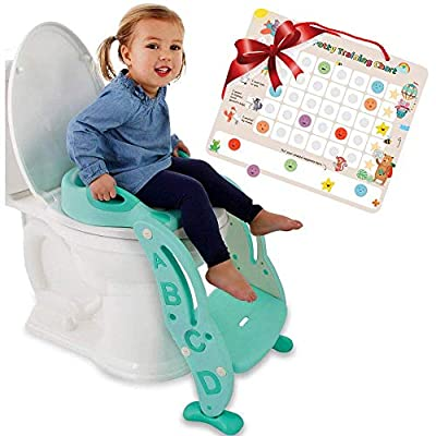 Potty Training seat with a Ladder