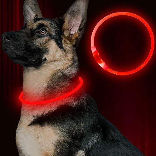 GREENTREEN Collare di Cane LED, Collare di Sicurezza a LED Ricaricabile, Ultra Luminoso per Il Tuo Animale Domestico per Una Maggiore visibilità e Sicurezza (Rosso)