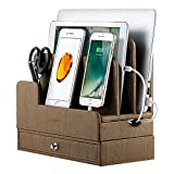EasyAcc Charging Stations for RAVPower 60W 12A 6-Port Multiple Devices Double-Deck Docking Station Organizer for Anker USB Charger (Without Charger) for iPhone 11 Pro Cell Phones,Tablet,MacBook(Brown)