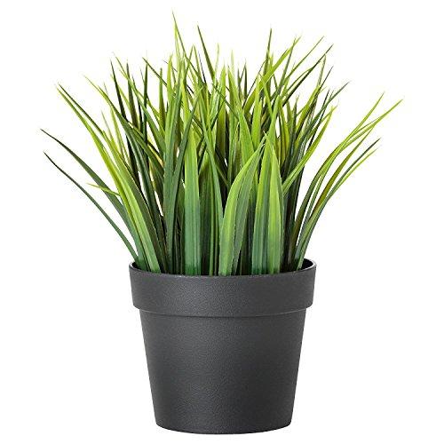 Ikea, Fejka Planta Artificial, Zacate de Trigo, Color Verde