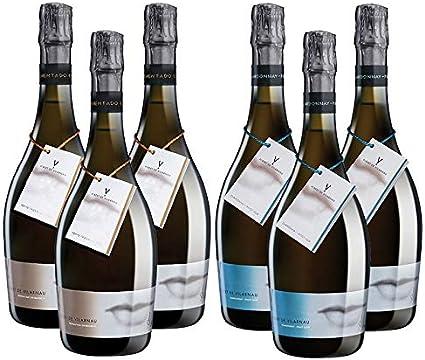 Cavas Albert de Vilarnau Fermentado en Barrica y Chardonnay Pinot Noir - D.O. Cava - Mezclanza Gonzalez Byass (Pack de 6 botellas)