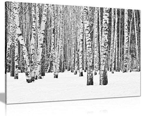 Kunstdruck auf Leinwand, Motiv Baum im Winter, Schwarz / Weiß, 30 x 20 cm