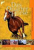 Das Quarter Horse