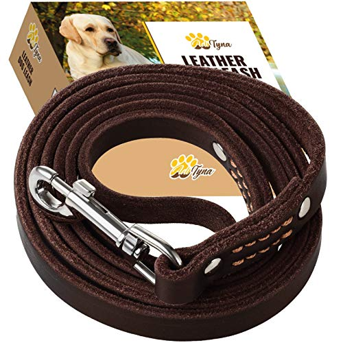 ADITYNA Leather Dog Leash 6 Foot - Soft and Strong Leather Leash for Small and Medium Dog (6 ft x 5/8', Brown)