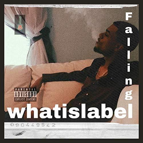 Whatislabel