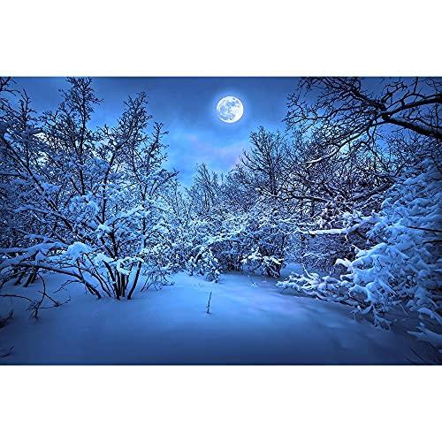 Oggetti di scena per la fotografia in vinile, sfondo per la fotografia di paesaggi invernali, oggetti di scena per la fotografia di ritratto A13 7x5ft/2.1x1.5m