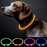 Collar Perro LED Collares Para Perros Collar de Seguridad Para Perro con USB Recargable Súper Brillante Collar Intermitente Para Perros Pequeños, Medianos y Grandes