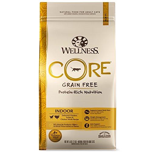Wellness CORE Grain Free Indoor Dry Cat Food