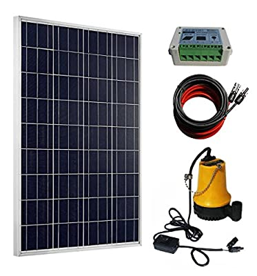 ECO-WORTHY 100W Solar Water Pump Kit - 100W Solar Panel + 12V Water Pump + 20A LCD Display PWM Controller + Pair of Cable for Remote Watering, Garden, Farm Irrigation, Tank Filling