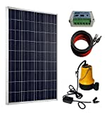 ECO-WORTHY 100W Solar Water Pump Kit - 100W Solar...