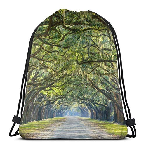 Lmtt Bolsas con cordón Mochila de Oak Tree Road Bolsas de cuerda de tracción a granel Almacenamiento deportivo Gimnasio para niñas Mochila de viaje al aire libre como imagen