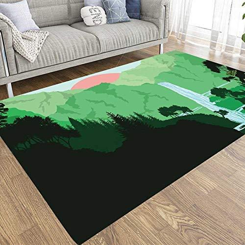 SBSNBU 2 x 3 alfombras de área de American Falls alfombra adecuada para niños y mascotas para el hogar, sala de estar, decoración de interiores