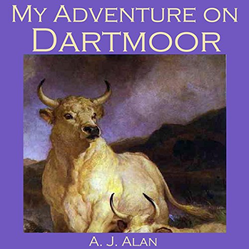 My Adventure on Dartmoor Titelbild