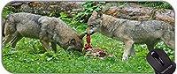 XXL大型マウスパッド、野生動物オオカミデスクマットステッチエッジ