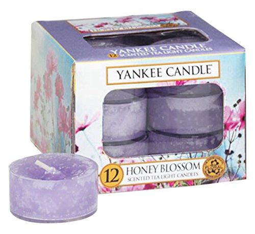 Yankee kaars thee licht kaarsen, honing bloesem, pak van 12