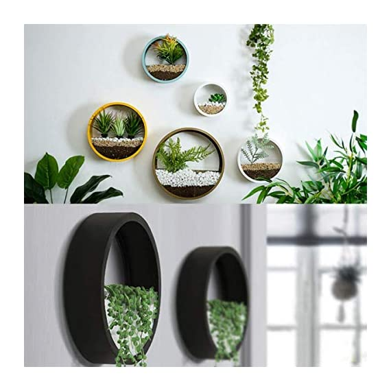 ZEETOON 3 Pack Set Modern Wall Planters Succulent Planter Circle Metal Flower Pot Indoor Air Plant Vertical Container Hanging Vase Home Decoration Size S,M,L Black, with 3 Artificial Succulent Plants 3 MATERIAL: Stabilized iron alloy metal with powder coating ensures long lasting color and withstands extreme weather conditions. Tempered and limpid glass feasts your eyes, add visual intrigue to this wall hanging. Do not rust and no unpleasant smell. PLANTS: Great for succulent plants, air plant, mini cactus, faux plants, artificial plant. It also works for mint, herbs, basil, ivy, flowers, climbing plants, evergreens. The possibilities are only limited by your imagination; display them in a wall hook plant holder, a wall mount, a geometric glass vase, or even in a live wreath. They can even make the perfect desk centerpiece for your office. IDEAL: ZEETOON Wall Vase Perfect for displaying your favorite hanging plants, this wall holder is a basic piece that will fit perfectly anywhere. Outdoor or indoor, kitchen, bedroom, great garden shed decor, farmhouse style wall decor, front entry way, or mounting on bathroom.