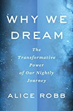 Why We Dream: The Transformative Power of Our Nightly Journey