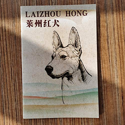 Chinese Red Dog/laizhou HONG Brochure-CKU CHINA inheems ras BEHOUD CLUB-2017 First Edition Standaard,Laizhou hong brochure