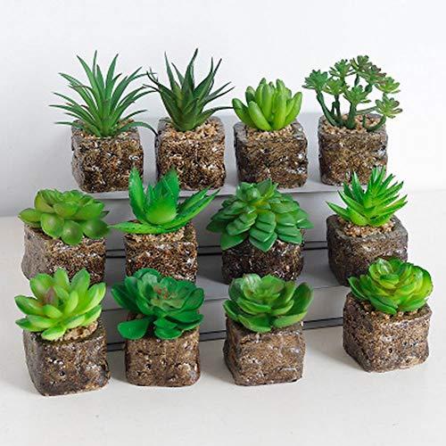 CLBEST 12 Arten Mini Künstliche Sukkulenten Dekorative Kaktus Kakteen Faux Topfpflanzen (Zufällig)