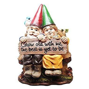 Ebros Grow Old With Me Mr And Mrs Gnome Statue 11 Tall For Patio Garden Lawn Home Decor Figurine