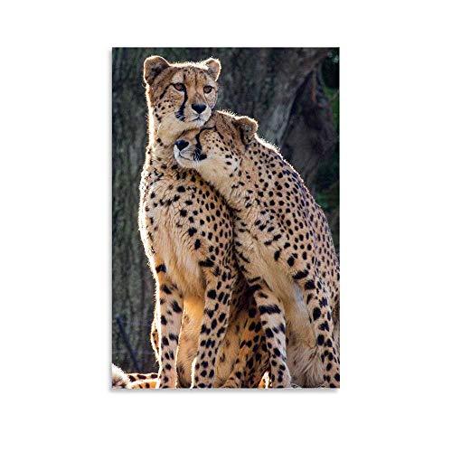 cheetah prints pictures - 1