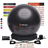 WISEMAX Exercise Ball Chair – Stability Yoga Balance Ball with Inflatable Ring Base, Resistance Bands & Pump, Loop Bands, Carry Bag, Poster for Home, Office, Posture, Gym Bundle, Home Workout- 65cm