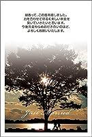 【私製はがき10枚】再婚報告はがき SAIF-02