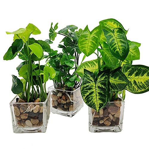 Aisamco 3 Stück Kunstpflanzen Faux Tabletop Greenery mit Klarglas Töpfen Seidenpflanzen in Glasvase Gefälschte Grünpflanzen Topfpflanzen für Heimtextilien
