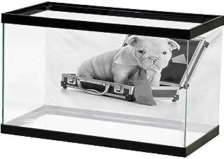 bulldog puppy incubator