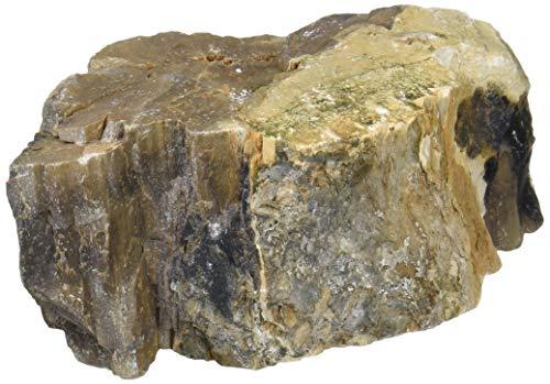カミハタ アクアリウムロック 木化石 形状お任せ ブラウン