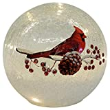Mark Feldstein & Associates Cardinal on Pinecone Crackle Glass Small 6 Inch LED Light Up Globe Tabletop Decoration