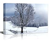 Canvas Prints Wall Art - Beautiful Winter Landscape with Snow Covered Trees (24' x 26')