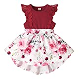 Baby Girl Dresses 6-9 Months Baby Summer Outfits Lace Ruffle Romper Top Tutu Red Skirt Floral Dress for Girls Clothing 6-12 Months