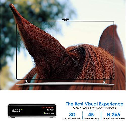 GT MEDIA GTS Sat Receiver 4K Android 6.0 TV Box DVB-S/S2 Amlogic S905D 2GB+8GB 3D H.265 HEVC MPEG-2/4 WiFi 2.4G Ethernet BT 4.0 Smart TV Box