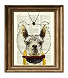 Leroy Gravity the Space Llama Astronaut Illustration Beautifully Upcycled Dictionary Page Book Art Print
