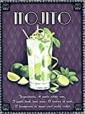 Mojito Time Metall Blechschild Retro Metall gemalt Kunst
