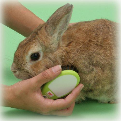 ドギーマンハヤシ『ウサギのツヤ出しブラシ』