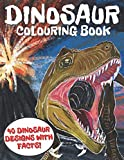 Dinosaur Colouring Book: Fun and Awesome Book for Kids and Adults, 40 Dinosaur Designs with Facts!